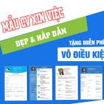 download-mau-cv-xin-viec-chuan