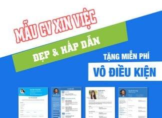 download-mau-cv-xin-viec-chuan