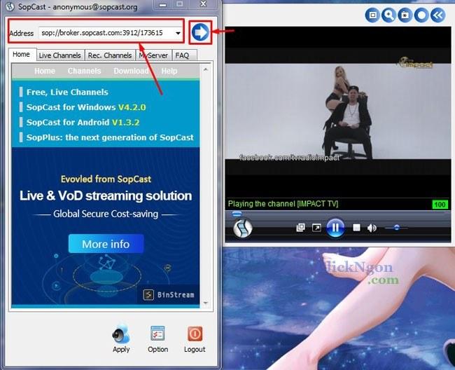 phần mềm xem bóng đá online sopcast