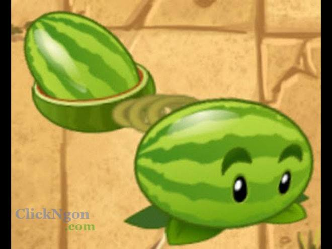 Melon-pult pvz 2